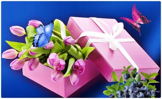 фиолетовые цветы в коробке  № 2541425 без смс