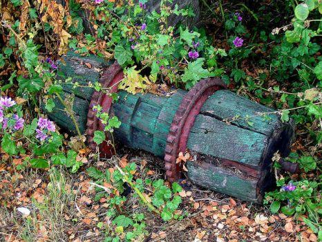 Новая жизнь старых вещей поделки для сада