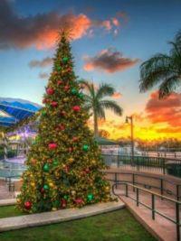 Harbourside Place, Jupiter, FL