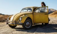 Yellow Old Beetle