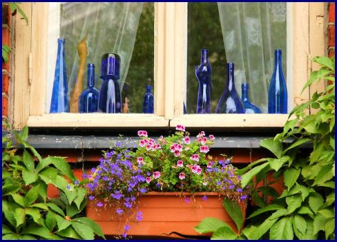 Window with blue glass and flowers