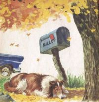Mailboxes Lassie & Mailbox Little Golden Book
