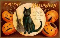 A Merry Halloween