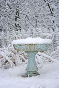 Weathered Bird Bath in the Snow