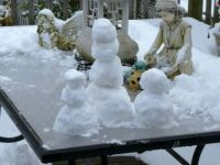 My Snow People