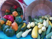 Peppers 'n zucchini squash