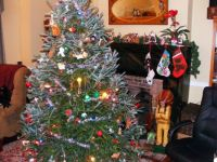 Christmas Tree and Hearth 2
