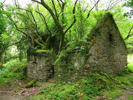 Abandoned Stone Cottage, Ireland
