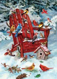 'Adirondack Birds' by Greg Giordano