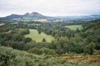 A VIEW IN THE SCOTTISH BORDERS