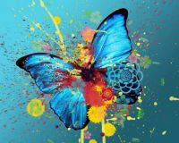 abstract-butterfly-design-wallpaper