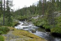 Norway, Buskerud County, Blefjell area, creek