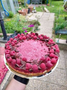 Homemade cheesecake topped with dark chocolate and fresh raspberries