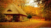 Autumn-Scene-wallpapers-54