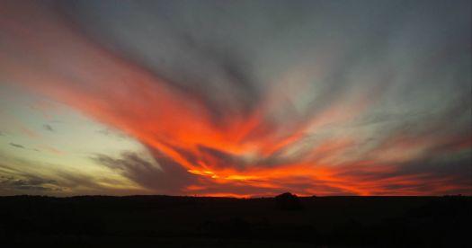 Sunningdale Sunset