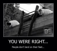 Cats Landing