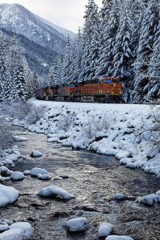 Train by snowy Brook