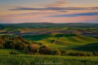 The Palouse of Washington State