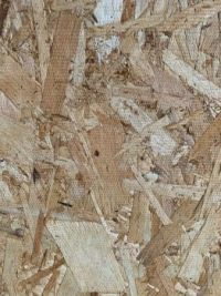 PLYWOOD, up close