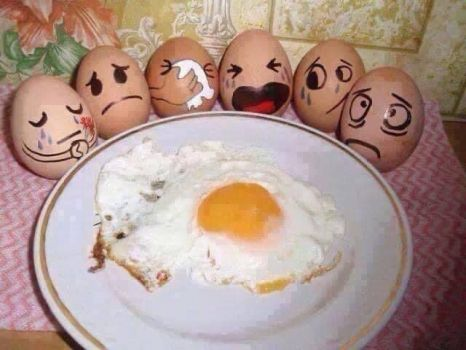 They are Eggceptionally Nervous