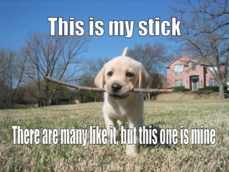 This is my stick