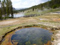 Yellowstone pools