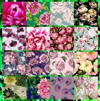 Sweet Peony Dreams Collage Challenge