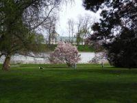Pardubice - v zámeckém parku