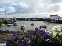 Harbour, Scotland