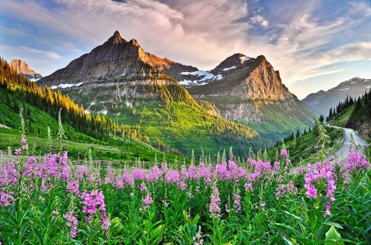 Glacier National Park,  Montana  4114
