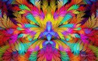 Rainbow Esplit Feathers