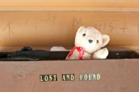 Lost Winter Teddy Bear