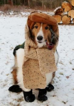 """By jove, it's still a bit chilly..!!"""
