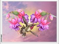 PUZZLE - Fushias And Hummingbird
