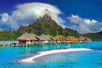 I need a Vacation!