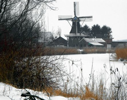 Greetings from Holland. Veelerveen
