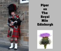 Piper on The Royal Mile Edinburgh