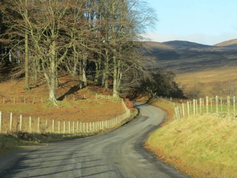 Winding Road in Scotland