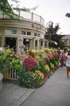 Niagara on the Lake