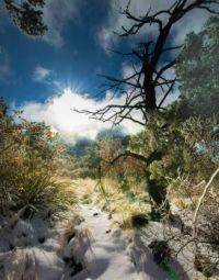 Desert Snow at Big Bend