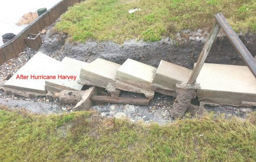 Harvey-4