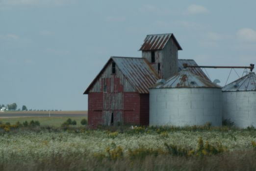 Corn Crib and Grain Bins