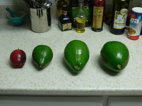 BORING!! - 2 1/2 LB Avocado on the right.