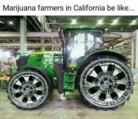 California Marjuana Farmer's ride