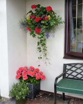 Garden baskets and containers (1)