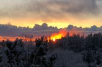 Sunset with snowy trees