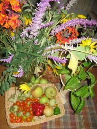 Fall Harvest in Cali