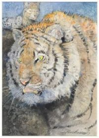 The Tiger Shere Kahn (from The Jungle Book) ~ Jerry Pinkney