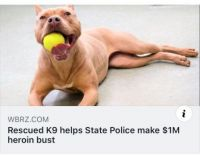 Rescued K9 helps State Police make $1M heroin bust