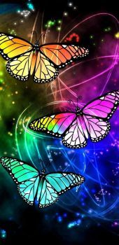 Beautiful butterfly art...